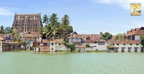 Padma Theertha and the Temple Gopuram